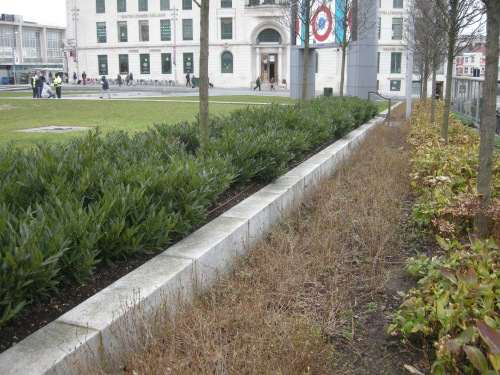 General Gordon Square, Woolwich - Step in Planting